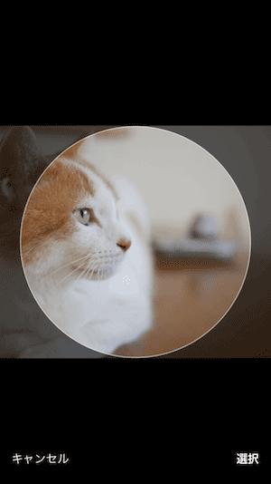twitter丸型アイコンの画像サイズ